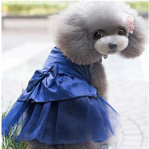 Fashion Wedding Dog Dress Dog Clothes