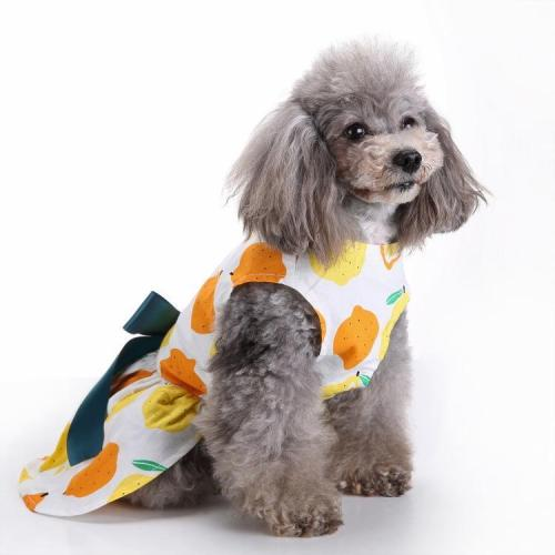 Cat Dog Floral Print Dress Dog Clothes
