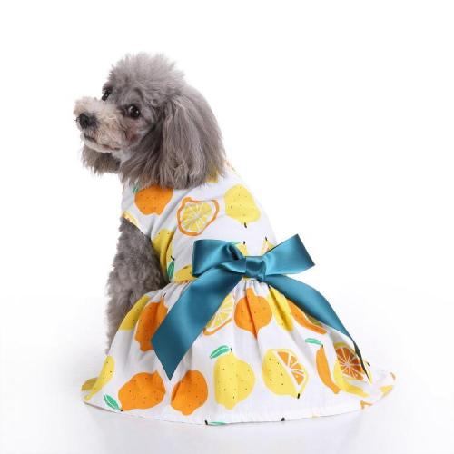 Cat Dog Floral Print Dress Dog Clothes