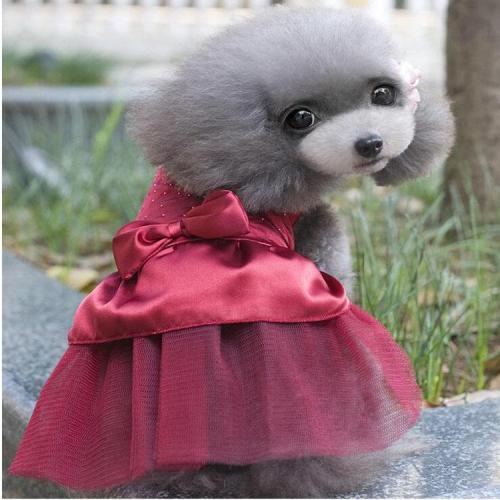 Fashion Wedding Dog Dress Dog Clothes