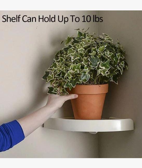 Snap Up Corner Shelf