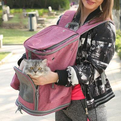 Outgoing Breathable Pet Backpack