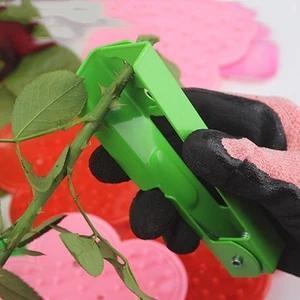 Flower Thorn Stripper