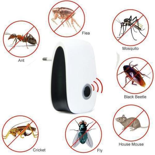Accelerated Pest Killer