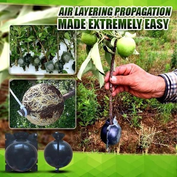 Plant Root Growing Box - Take root quickly and prevent plant root rot