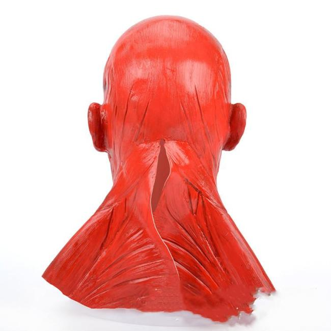 [Halloween Promotion!!!] Flayed Frank Mask