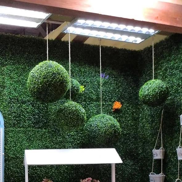 Simulation Plant Grass Ball