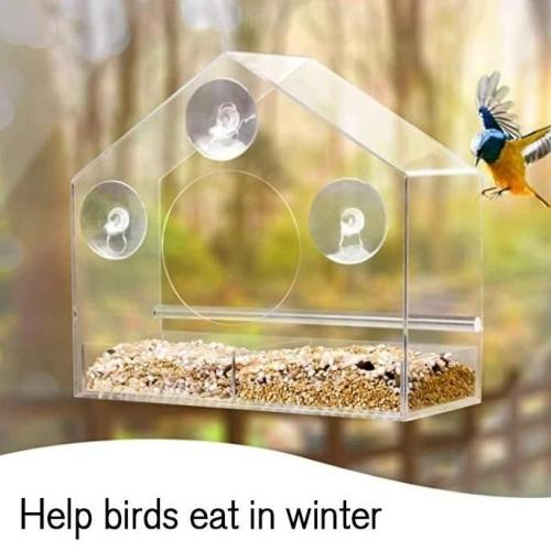 Window Bird Feeder- See Songbirds from Home!