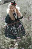 Poisonous Mushroom~ Gothic Lolita OP