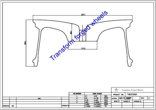 TM229003 22*9 Inch Forged Monoblock Wheels Blanks Drawing