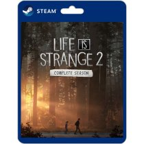 Life Is Strange 2 original PC steam game download play offline