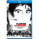 Dog Day Afternoon bd hd movie