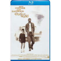 The Perfect World bd hd movie
