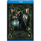 Fantastic Beasts The Crimes of Grindelwald bd hd movie