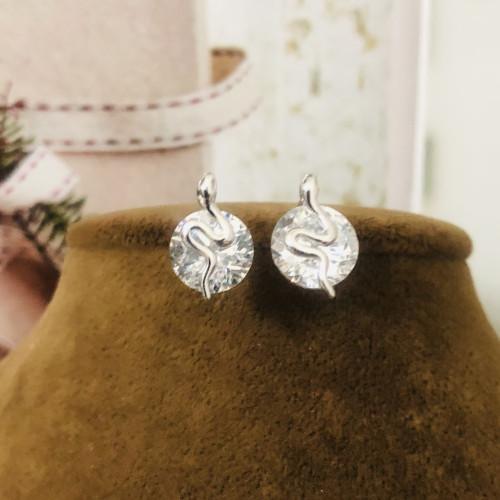 Silver Snake of Zircon Microscope Simple Style Stud Earrings 2011191