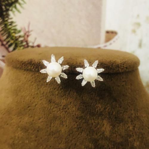 Silver Flower of Zircon Microscope Simple Style Stud Earrings 2011200