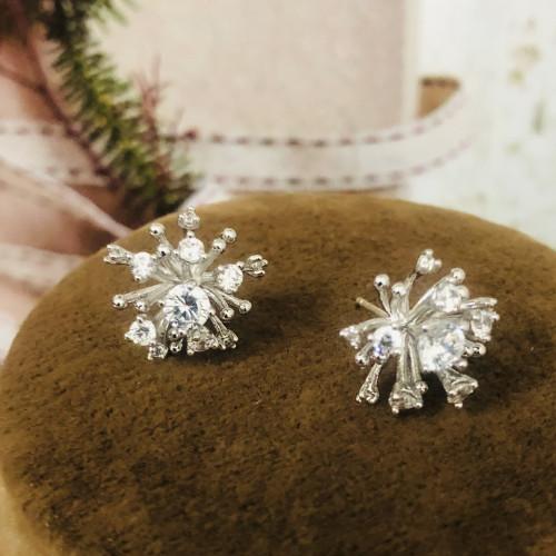 Silver Fireworks of Zircon Microscope Simple Style Stud Earrings 2011198
