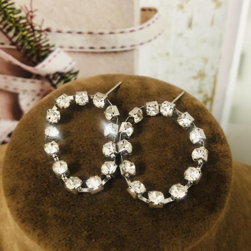 Silver Coil of Zircon Microscope Simple Style Stud Earrings 2011184