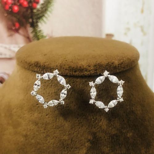 Silver Zircon Microscope Simple Style Stud Earrings 2011201