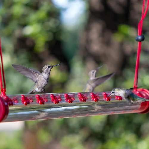 Bob's Best Hummingbird Feeder