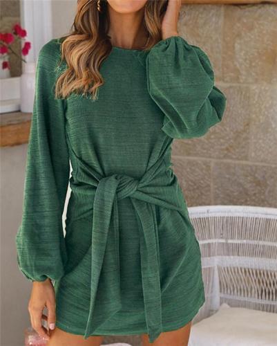 Long Sleeve Round Neck Holiday Dresses Shift Daytime Mini Dresss