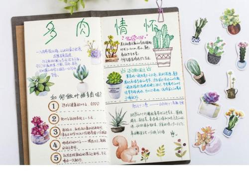 50pcs Succulent stickers pack, Journaling,Planner,bullet journal,Diary Stickers, Colourful stickers