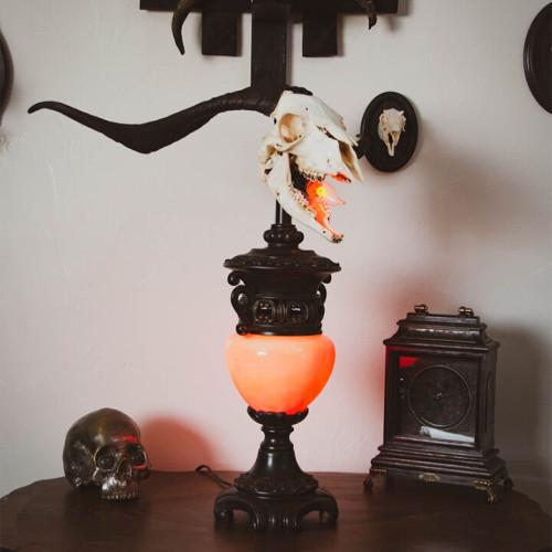 Ram Skull Lamp