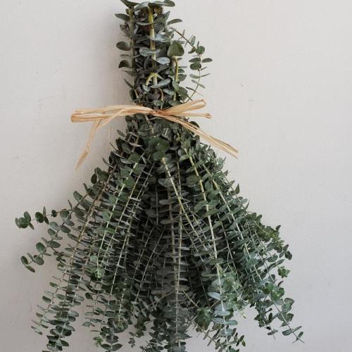 Shower Eucalyptus Home Decoration