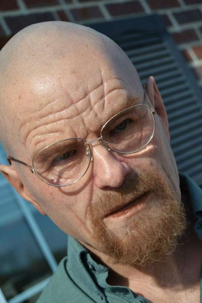 Walter White Disguise Mask