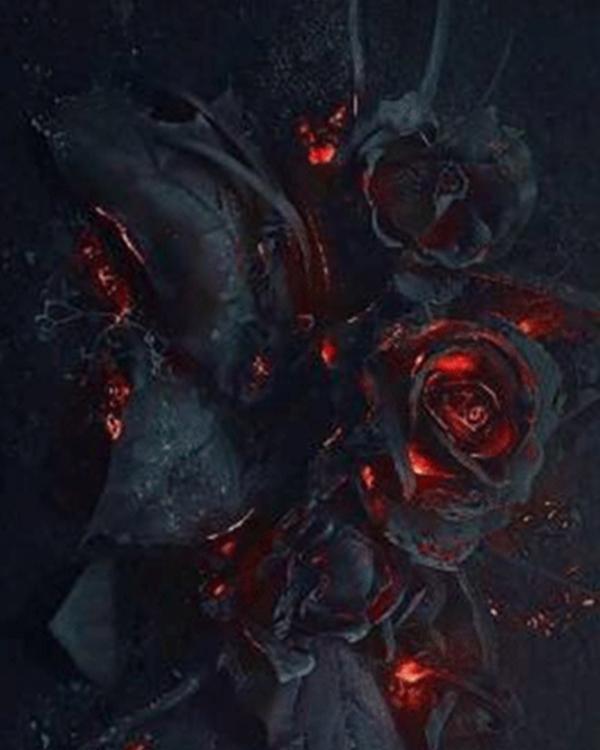 Fire Rose Gradient Long Sleeve T-shirt