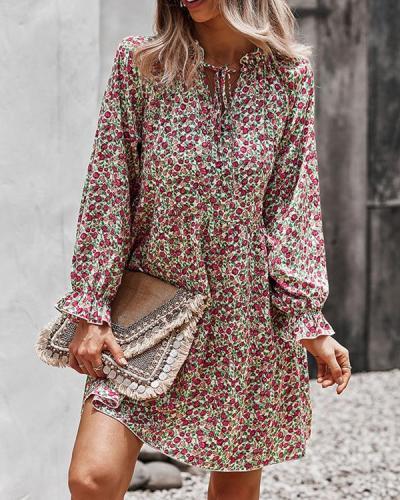 Chiffon Print Long Sleeve Mini Vacation Dress