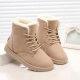 Women's Warm Fur Plush Insole Suede Waterproof Ankle Snow Boots