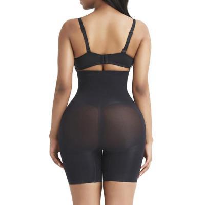 Magic Seamless Panty Sheer Mesh Sleek Curves