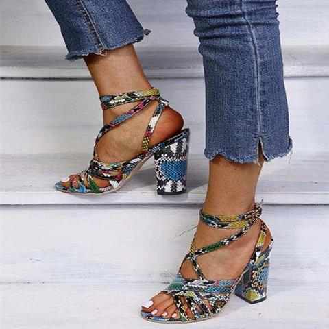 Adjustable Buckle Chunky Heel Sandals Colorful Fashion Heels