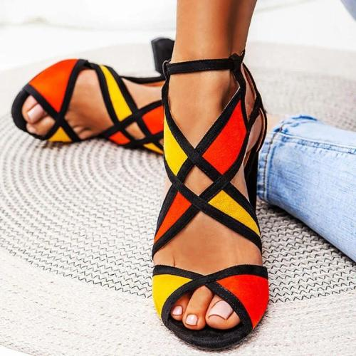 Women Hit Color Peep Toe Buckle Strap Chunky Heel Sandals