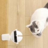 Self Playing Cat Toy
