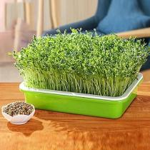 Indoor Gardening Double-layer Seedling Tray
