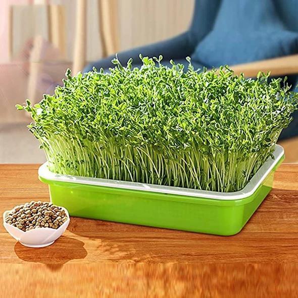 Indoor Gardening Double-layer Seedling Tray