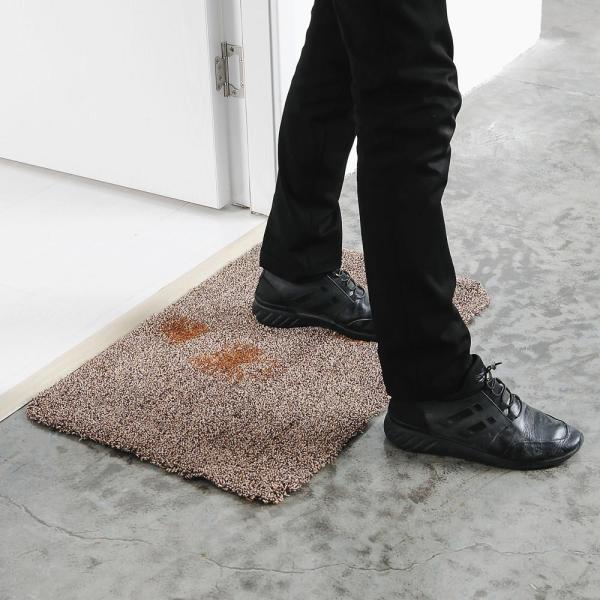 Clean Step Door Mat