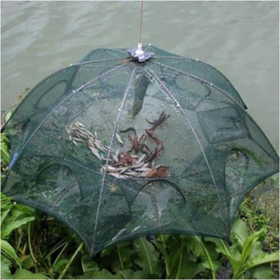 The Magic Fishing Net - Free Shipping