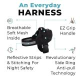 Best Dog Harness That Prevent Dogs From Pulling