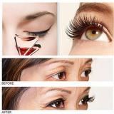 ⚡Black Friday Sale⚡ Magnetic Eyelash Partner