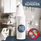 Non-toxic Mold Remover