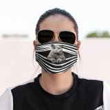 Cat Lover Cloth Face Mask