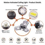 Adjustable LED Ceiling Light