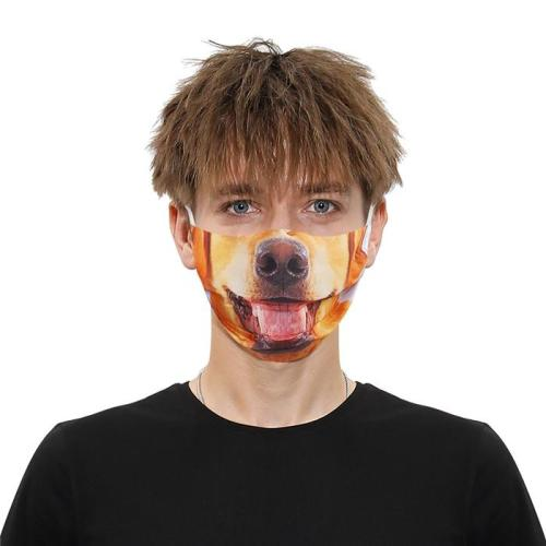 Funny Transformation Face Mask