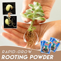 Rapid-Grow Rooting Powder (5PCS)