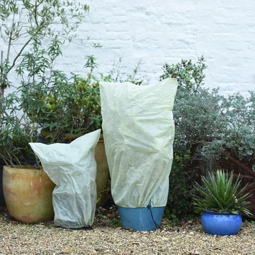 Winter Plant Protection Cover