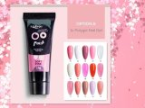 Poly Gel Nail Kit
