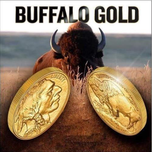 1 OZ AMERICAN GOLD BUFFALO COIN